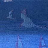 Слинг-шарф Didymos Jacquard North Sea at Night